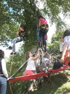 Atelier accrobranche avec les enfants